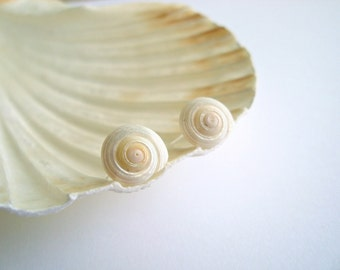 Spiral Shell Stud Earrings, Beach Shell Studs, Iridescent Shell Earrings,  Sterling Silver Studs, Nautical Earrings, Ocean Jewelry