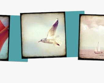 Seaside - 3 Postcards boat water sea ocean beach seagull bird fly rescue