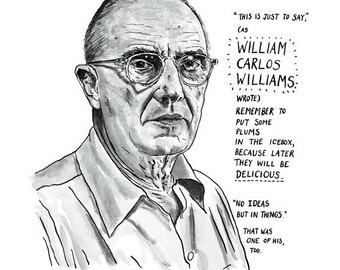 metaphor and william carlos williams —william carlos williams, from the autobiography  but at the beginning of it, a  man is a metaphor for the city of paterson, and vice-versa.