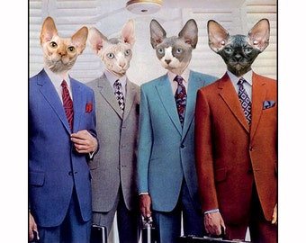 cats, photo collage, paper collage, Cat, Mid century modern, 60's, sphynx cat, color, digital collage, fun, silly, greeting cards, SET OF 4