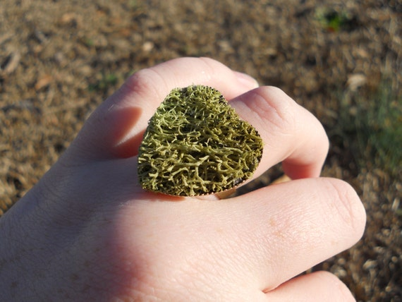 Moss Heart Ring - Natural Reindeer Moss - Rustic, Nature, Moss, Green Adjustable Ring