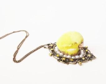 bird head taxidermy jewelry cameo necklace - SECRET GARDEN