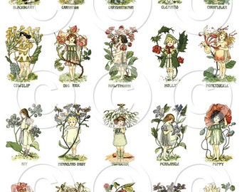 Instant Digital Download Printable Fairies in the Flowers 3 Collage Sheets