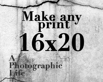Choose a ((16x20)) size for any photo in my shop