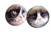 sweet grumpy cat one inch pin back or magnet sets