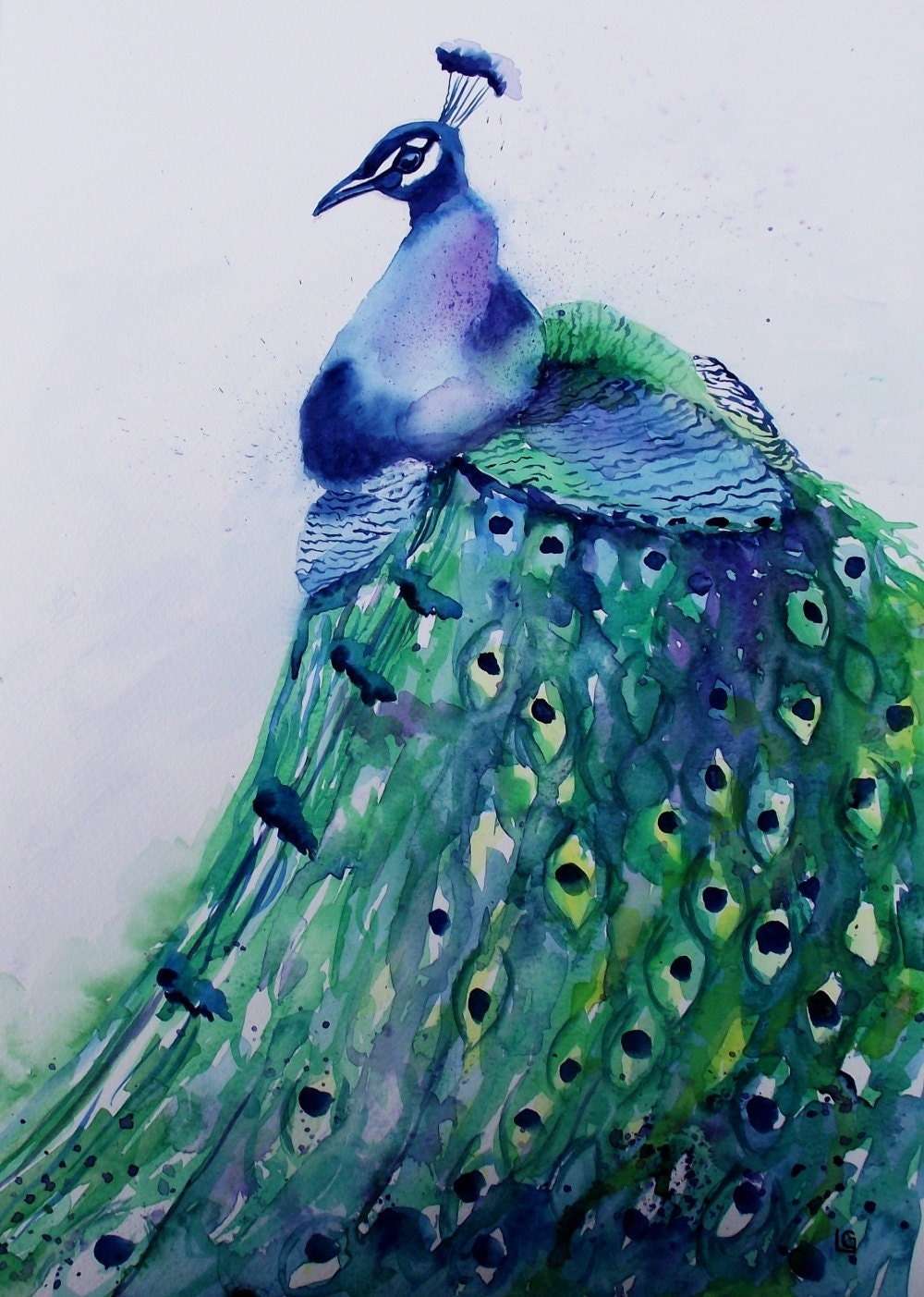 Peacock Original Watercolour Painting 11x15 By Lavendergeorge