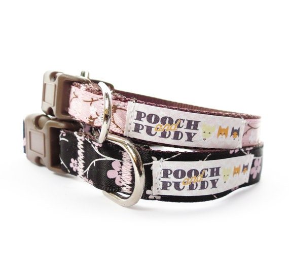 Why Do Dogs Eat Their Own Poop Wiki Cute Girly Dog Collars Pitbull