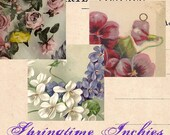 Springtime Inchies Digital Collage Sheet - Floral Images of Springtime - Instant Download