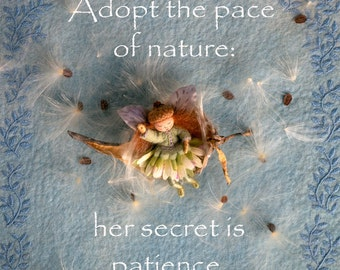 Adopt the Pace of Nature print 8.5 x 11
