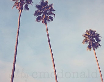 Palm Tree Photography, Los Angeles Photography, California Photography, Bohemian Wall Art, boho chic print, pastel blue, beach photography