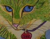 ACEO Original oil  Cat  kitten kitty art custom Portrait handmade USA