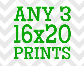 Any (3) Three 16x20 Prints - You Choose the Prints and Colors
