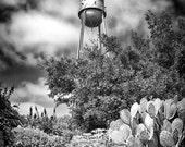 Gruene, TX Water Tower (black & white matte print)