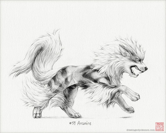 Arcanine 8 x 10 print pokemon drawing art artwork