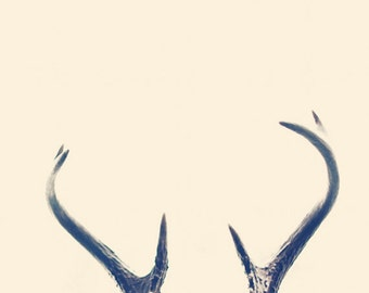 8x12 Antlers