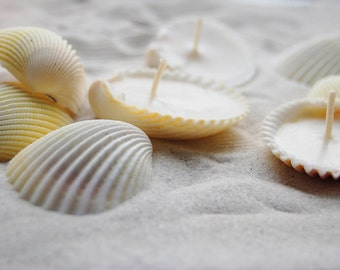 Eco-friendly Candles Scented Hand Made Seashells Candles - Set Of 36 units, Soy Candles, Scented Candles Set - Beach Wedding Favor Decor