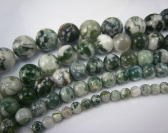 tree agate round bead 4mm 15 inch strand