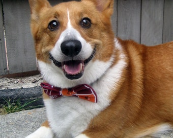 Virginia Tech slip-on bow tie for dogs