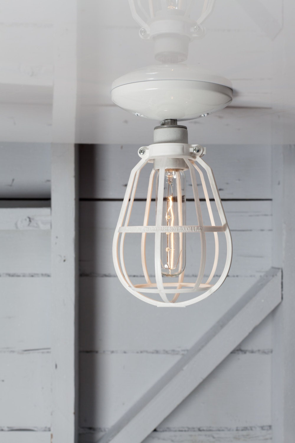 Industrial Cage Light Ceiling Mount