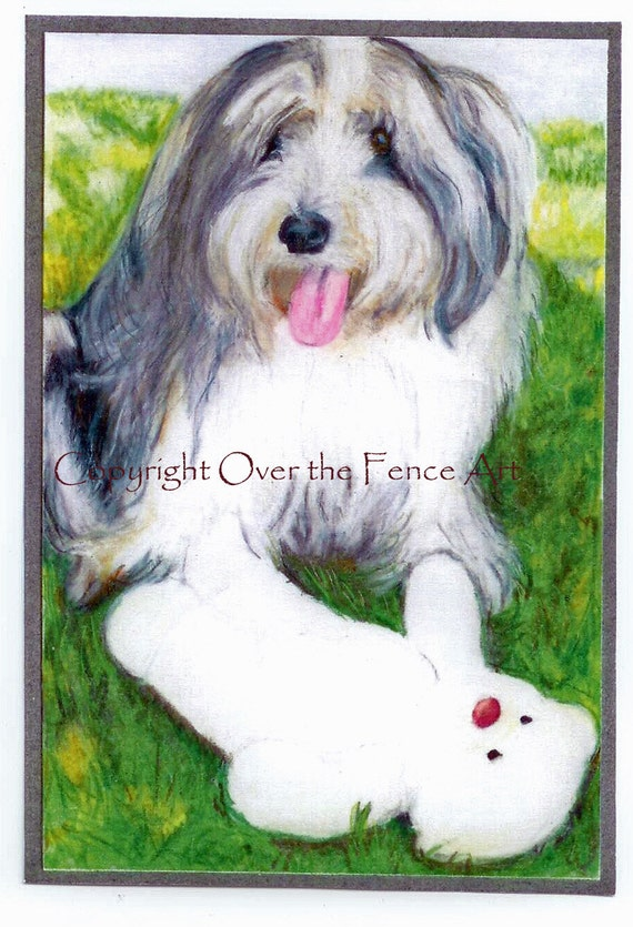 Bearded Collie Card Fine Art Print from Original Art Greeting Card Dog Portrait