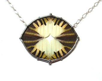 Abstract Real Butterfly Wing Statement Necklace