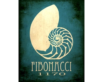 8x10 Fibonacci Art Print - Numbers in Nature, Science Poster Nautilus Shell, Mathematic Decor, Number Sequence Art, STEM Poster Illustration