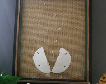 Sanddollar Picture,  Split Sanddollar with the Doves Flying Out, set on Burlap Background in a Repurposed Black Frame, Beach House Decor