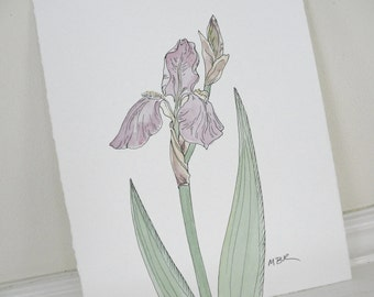 Purple Iris Ink Watercolor Nature Art, Watercolor Botanical Painting Lavender Flower Painting Original Watercolor Ink Painting 8 x 10