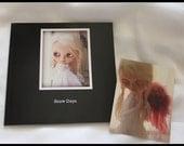Photo Book of Custom Blythe - Snow Days