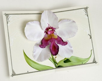 Orchid Pop Up Card - White Dragon Flower for birthday, get well, anniversary or decoration