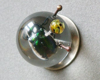 On Sale Marked Down Eye Of The Beetle Brooch
