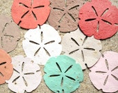 30 BIG Sand Dollars - Seed Paper Sand Dollar - Beach Wedding Favors - Plantable Seed Paper Shells - Destination Wedding