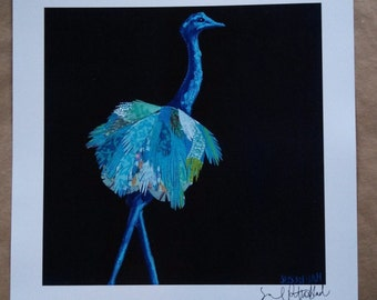 SALE Blue Ostrich Limited Edition Print