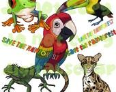 INSTANT DOWNLOAD Rainforest Jungle Animals Parrot Toucan Iguana Jaguar Tree Frog Digital Clipart Graphics No.1 Buy 1 Get 1 Free