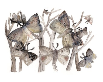 Moths No. 1  print- grey, taupe, rose- spring, nature
