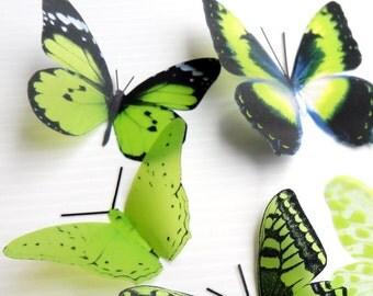 12 x Mixed Green 3D Transparent Butterflies