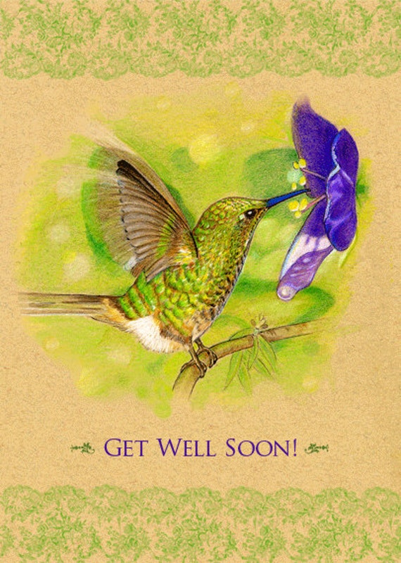 Get Well Greeting Card Hummingbird 5 x 7