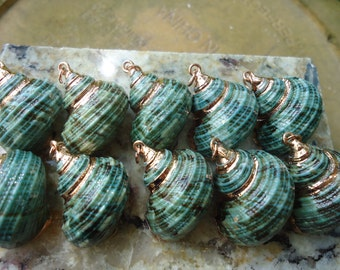 Wedding Set of 10 Gold Trim Green Turbo Seashell Pendants