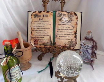 Wicked witch poppy potion poison flying monkey wings spell altered book prop wizard of oz halloween