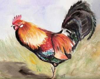 rooster giclee prints, kauai rooster art, kauai chickens, kauai birds, kitchen bird art, gifts for him, kauai giclee, hawaii art