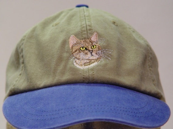 Cheap bengal cats