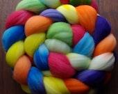 Spin a Rainbow 62 Ct. Superwash Merino Spinning Fiber