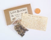 SAMPLE - Choose a Design - Flower Seed Favor - Seed Packet Favor - Wildflower Seed Favor