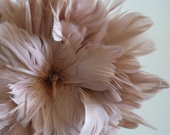 GOOSE COQUILLE Feathers,  English Rose Pink / 424