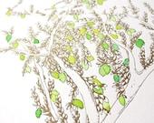 Lime Tree Letterpress & Watercolor Print- Kitchen Art