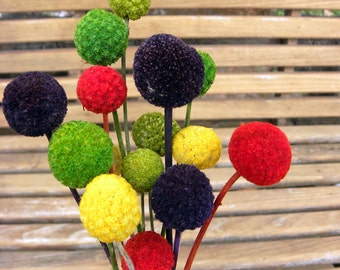 12 dyed Craspedia Long stems-Your color choice-DRIED Billy Balls-Orange-purple-Green Wedding Flowers