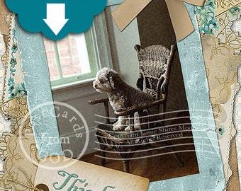 Thinking Of You Printable Greeting Card / Teal / Poodle -  5x7 Greeting Card  - Printable Instant Download Ready To Print Digital JPG Sheet