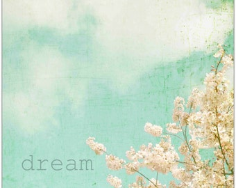 DREAM photo Shabby Chic CHERRY BLOSSOMS Nature Photography Vintage Nostalgia Cottage Decor Spring Blossom