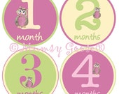 Baby Girl Owl Stickers Baby Months Stickers Girl Milestones Month Baby stickers  Baby Age Photo Prop
