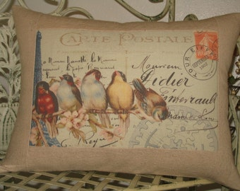 Carte Postale French Bird Throw Pillow with French Script, Cottage Pillow with Rainbow of French Birds
